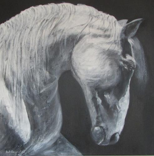 Stallion Acrylic 50x50 cms SOLD